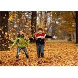 Autumn Leaves Retirement Home Photos